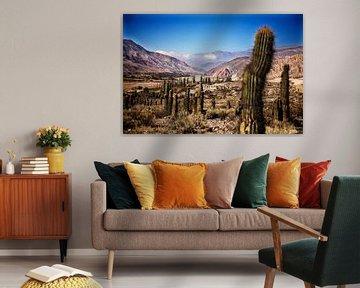 Vallei van kaktussen von Feike Faase