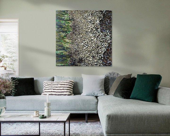 Sfeerimpressie: abstracte kunst van moeder natuur, mosselen  op een baken van Hanneke Luit
