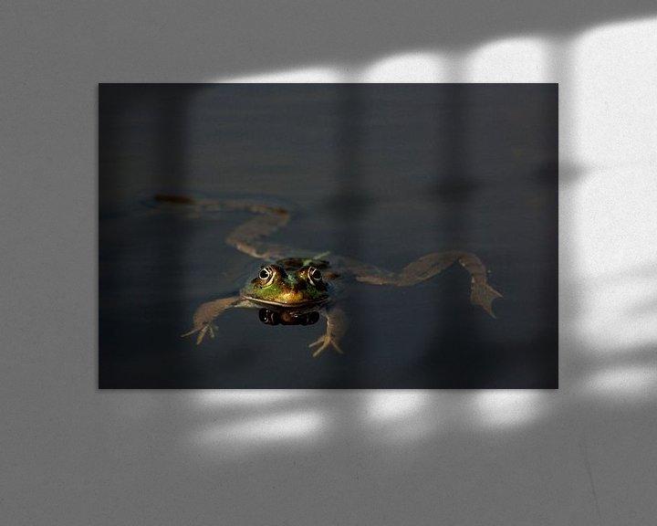 Sfeerimpressie: Kikker van Sense Photography