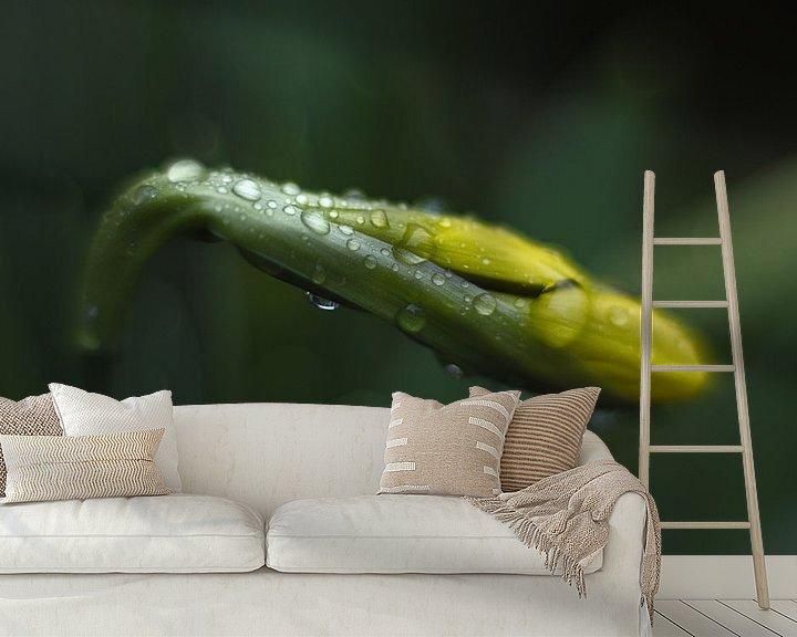 Sfeerimpressie behang: Delicate druppels van Mike Bing