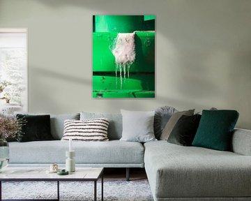 Ijsgroei op een groene boei bij Lauwersoog van Helene Ketzer