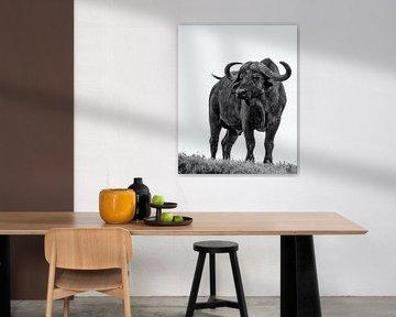 Büffel von Marije Rademaker