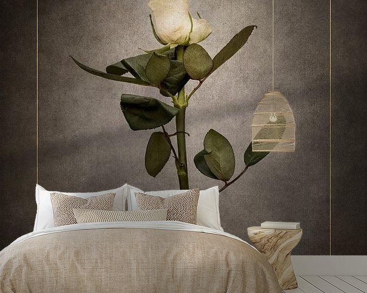 Beispiel fototapete: Elegante weiße Rose   Vintage-Stil gold von Melanie Viola