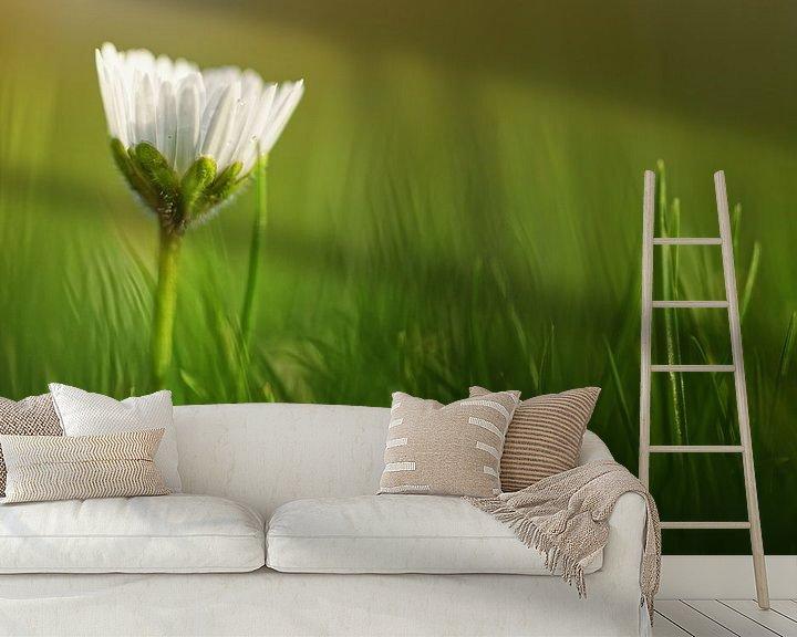 Sfeerimpressie behang: When should I wake up?..... (bloem, madeliefje) van Bob Daalder