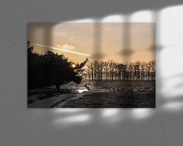 Winterlandschap met zonsopkomst Bussumerheide van Maikel Dijkhuis