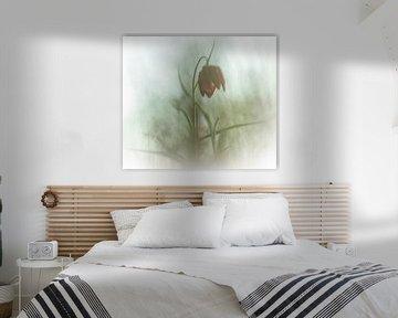 bloeiende kievitsbloem van Guido Rooseleer
