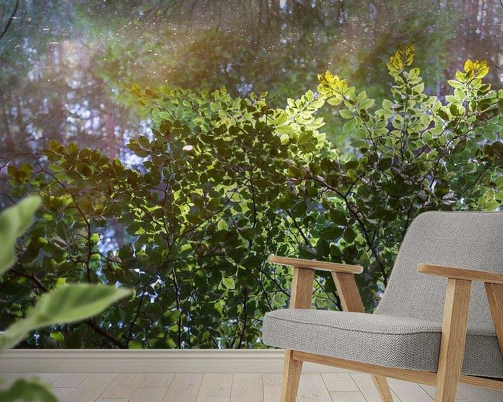 Beispiel fototapete: Gespiegelter Wald von Adriana Mueller