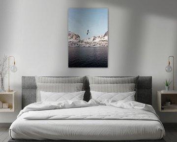 Vogel in Fjord, Noorwegen | Landschapsfotografie Lofoten | Fotoprint natuur sneeuw van Dylan gaat naar buiten