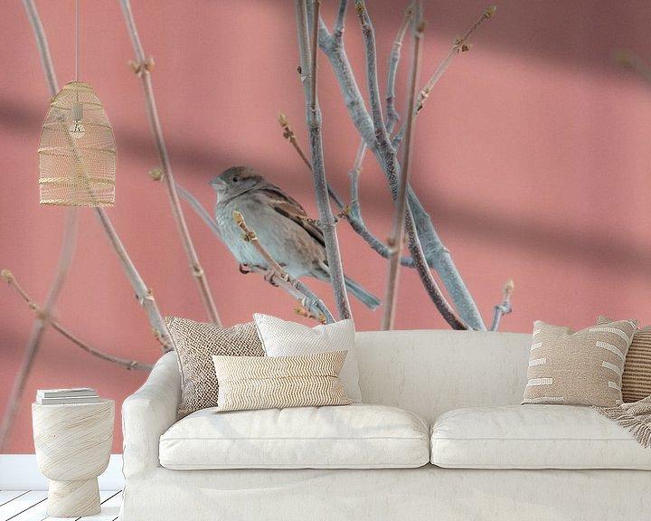 Sfeerimpressie behang: Huismus voor Rorbuer | Foto print Noorwegen | Vogelfotografie van Dylan gaat naar buiten