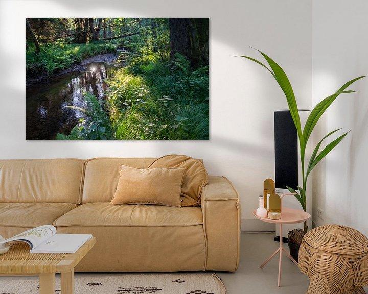 Beispiel: Lichtstimmung am Flussufer von Adriana Mueller