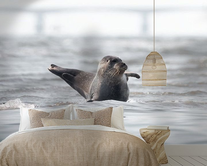 Sfeerimpressie behang: Zwaaiende zeehond   Natuurfotografie Zeeland van Dylan gaat naar buiten