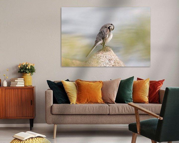 Beispiel: Waschen Vogel am Wasser | Vogelfotografie drucken Schweden von Dylan gaat naar buiten