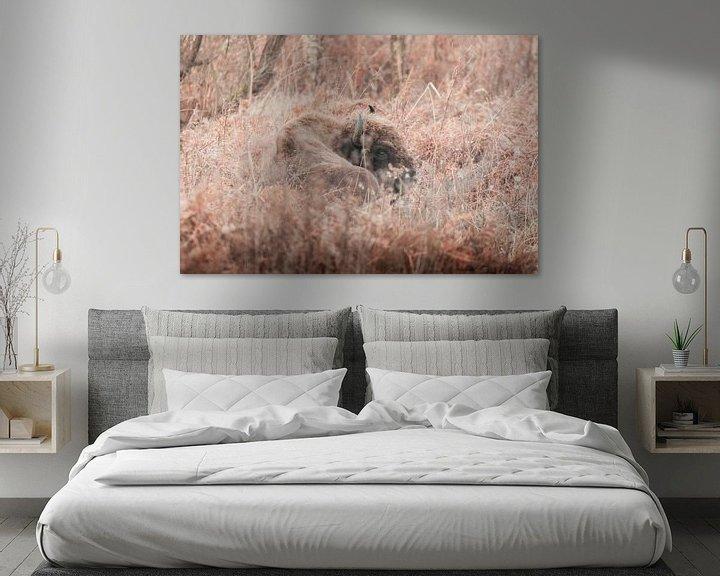 Sfeerimpressie: Wisent in sprookjesachtig landschap | Slikken van de Heen, Zeeland | wildlife Nederland van Dylan gaat naar buiten