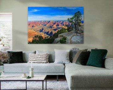 Zonsopkomst Grand Canyon National Park