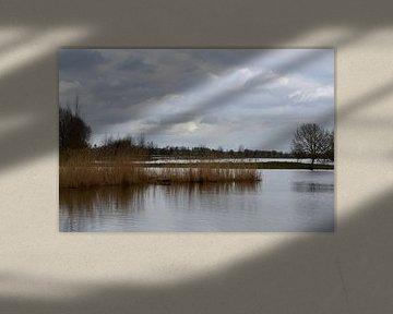 Gat van den Ham van FotoGraaG Hanneke