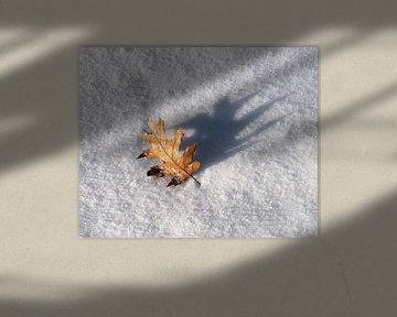Eikenblad in de sneeuw van Rick Kloekke