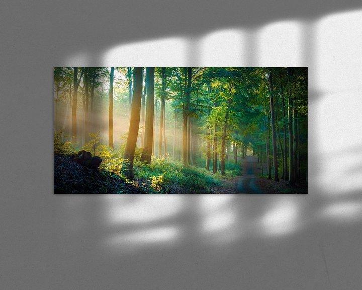 Beispiel: Wald im Licht von Martin Wasilewski