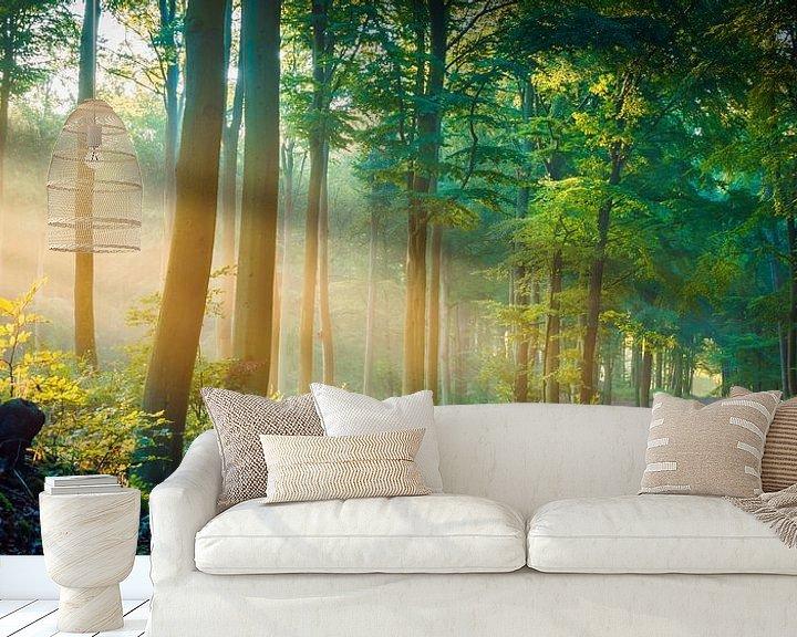 Beispiel fototapete: Wald im Licht von Martin Wasilewski