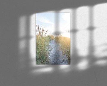 De zon in de duinen van Laura Elkhuizen Fotografie