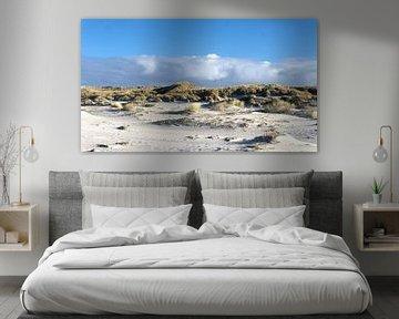 De duinen van Terschelling van Tineke Visscher