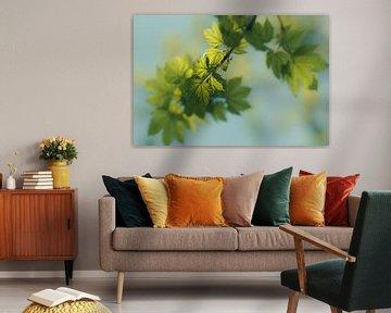 Weelderige groene bladeren van Angelique van Esch