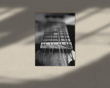 Toets van een Banjo Mandoline van Martijn Wit