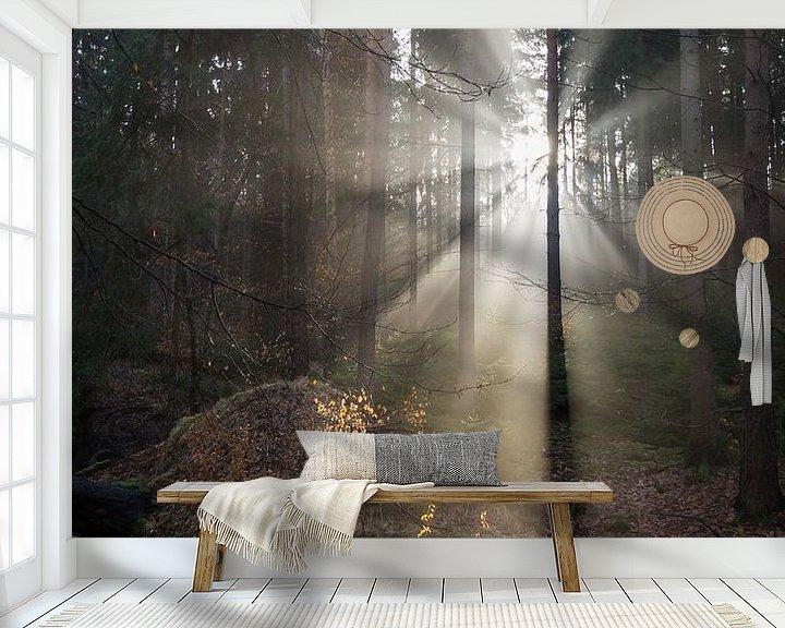 Beispiel fototapete: Winterlicht im Wald 3 von Adriana Mueller
