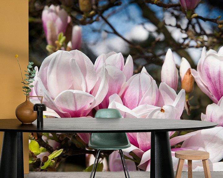 Sfeerimpressie behang: Magnolia in bloei van Peter Mensink