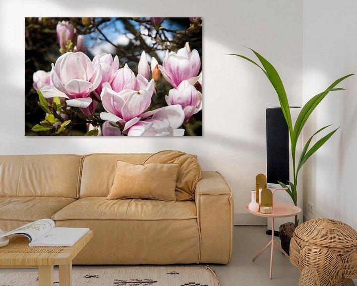 Sfeerimpressie: Magnolia in bloei van Peter Mensink