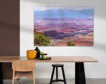 Uitzicht op Canyonlands National Park in Amerika van Linda Schouw