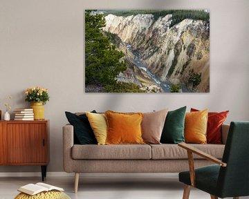 Der Grand Canyon von Yellowstone in Amerika von Linda Schouw