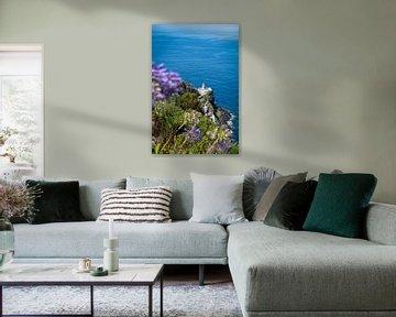 Een blik op de vuurtoren I | Een reis over Sao Miguel, de Azoren van Roos Maryne - Natuur fotografie