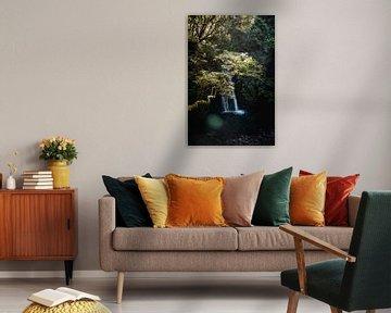 Op pad naar de waterval I | Een reis over Sao Miguel, de Azoren van Roos Maryne - Natuur fotografie