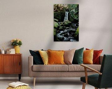 Op pad naar de waterval II | Een reis over Sao Miguel, de Azoren van Roos Maryne - Natuur fotografie