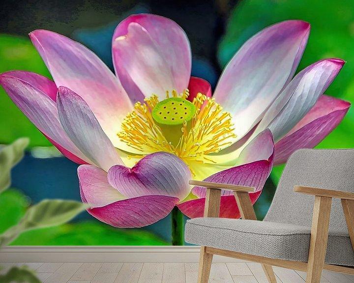 Impression: Lotus sacré sur Eduard Lamping
