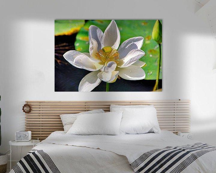 Sfeerimpressie: Heilige Lotus van Eduard Lamping