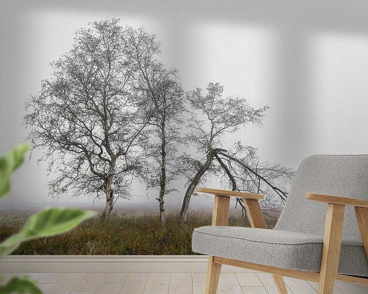 Beispiel fototapete: Birken im Nebel von Peter Bolman