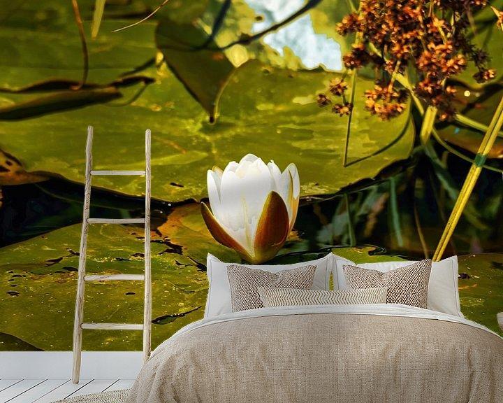 Sfeerimpressie behang: Waterlelie/Heilige Lotus van Eduard Lamping