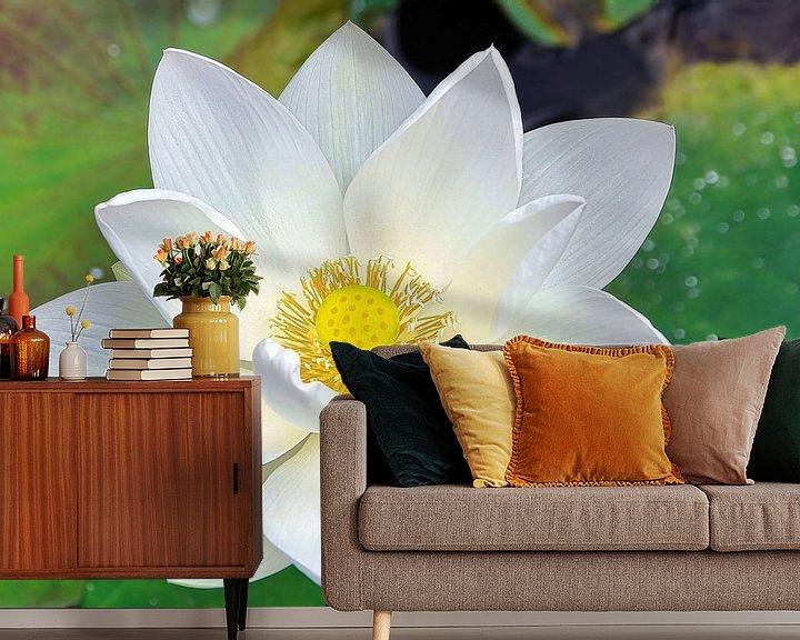 Sfeerimpressie behang: Heilige Lotus/Indische Lotus van Eduard Lamping