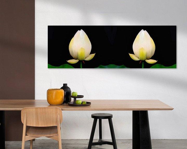 Beispiel: Heiliger Lotus Zwillinge von Eduard Lamping