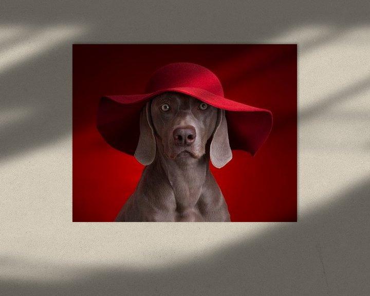 Sfeerimpressie: The Lady in Red van Raoul Baart