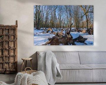 Amsterdamse Waterleidingduinen in de sneeuw van Merijn Loch
