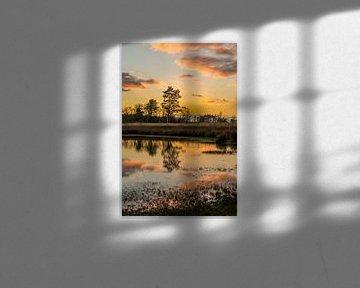Golden hour van Marian Schepens