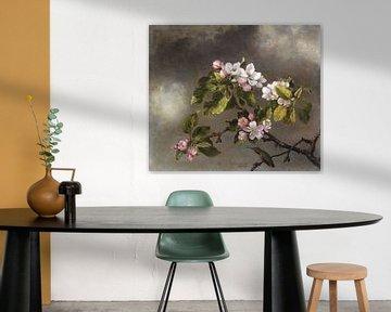 Kolibri, Marienkäfer in der Apfelblüte von Rudy & Gisela Schlechter