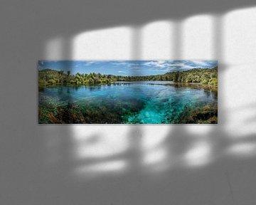 Pupu Springs, Golden Bay, NZ South Island van Pascal Sigrist - Landscape Photography