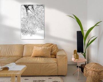 Dromend onder een boom| Zwart witte print | In de natuur van Wendy Boon