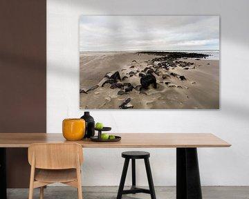 Journée d'hiver en mer sur la plage d'Ameland, sur la côte néerlandaise.