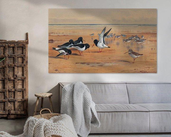 Sfeerimpressie: Birds on a Beach van Antonije Lazovic