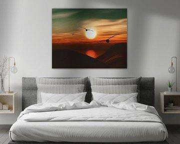 Zeemeeuwen bij zonsondergang 6