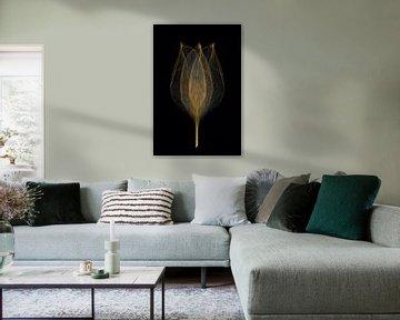 goldene Tulpe von Klaartje Majoor